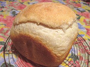 パルミジアーノのパン